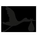0203_Stork