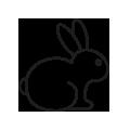 0710_Rabbit